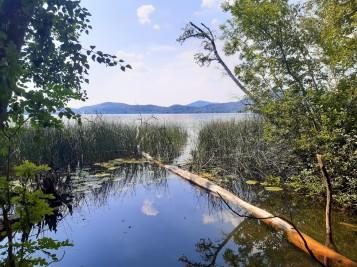 Laacher lake